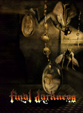 Final Darkness image