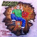 Backyard Surgeons image