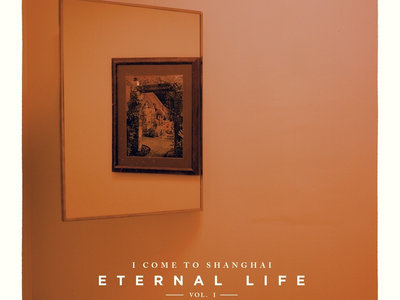 Vinyl LP of Eternal Life Vol 1 & 2