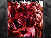 Psychosis Ex Machina Decay And Bloodshed Edition Pt. 1&2 CD's $16.00 + S&H