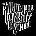 The Kilimanjaro Darkjazz Ensemble image
