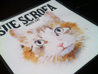 White Cat LP