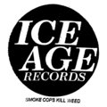 ice age records image