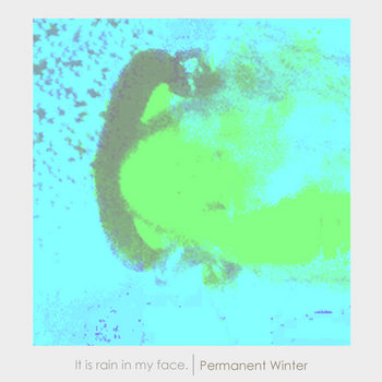 permanent winter cover art
