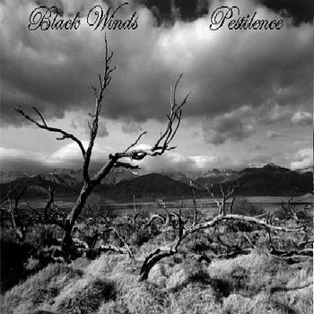 Black Winds - Pestilience cover art