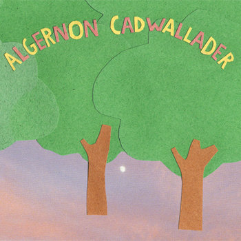 Some Kid of Cadwallader cover art