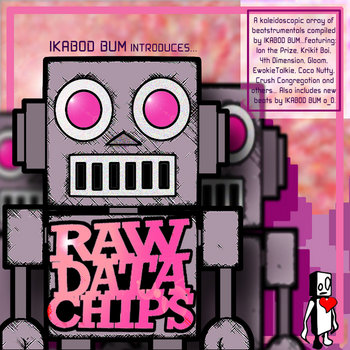RAW DATA CHIPS cover art