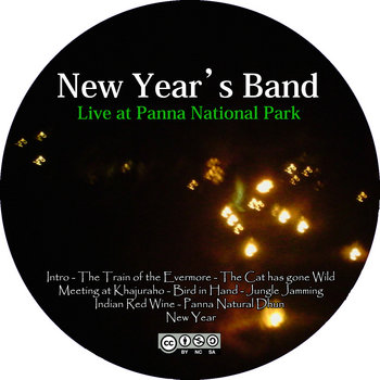 053 - Live at Panna National Park cover art