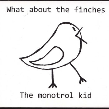 """What About The Finches"" cover art"