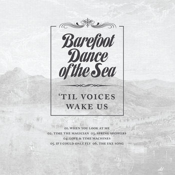 'Til Voices Wake Us cover art