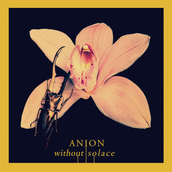 Without Solace cover art
