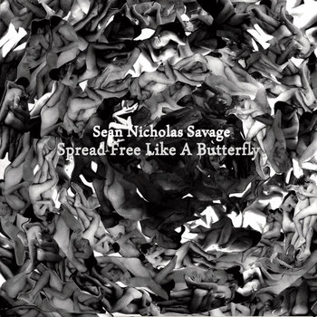 Spread Free Like A Butterfly cover art