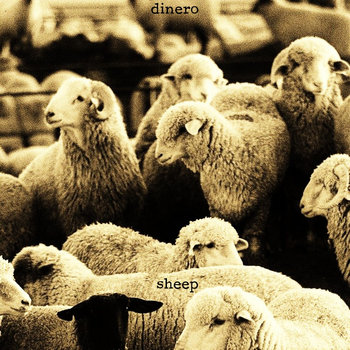 Sheep cover art
