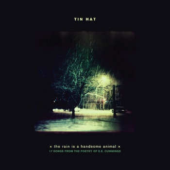 the rain is a handsome animal cover art