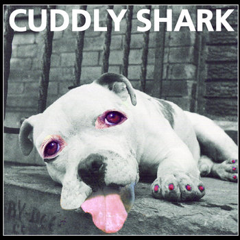 Cuddly Shark cover art