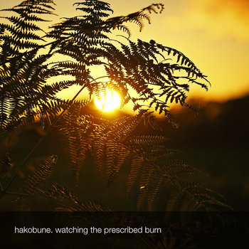 watching the prescribed burn cover art