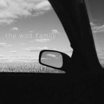 The Wild Family cover art