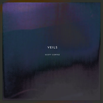 veils cover art