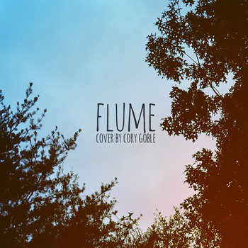 Flume (Cover) cover art