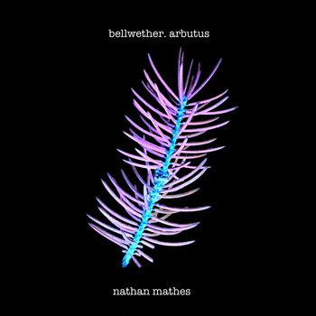 Bellwether. Arbutus cover art