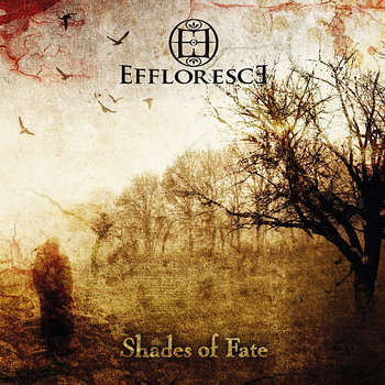 Shades of Fate cover art