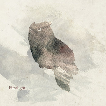 Firstlight (Single) cover art