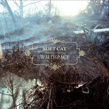 Wildspace cover art
