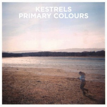 Primary Colours cover art