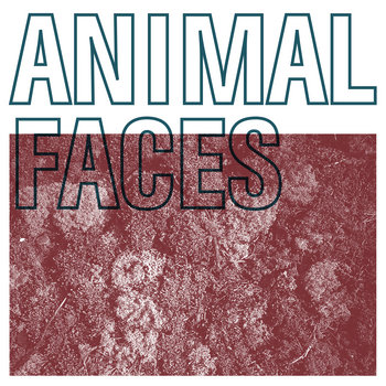 Animal Faces / Solids Split cover art