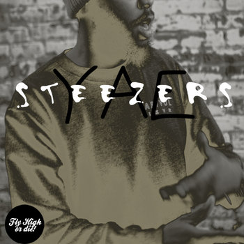 Steezers cover art