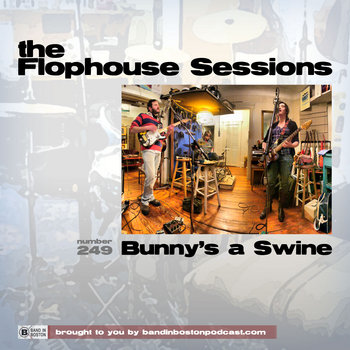 #249: Bunny's a Swine cover art
