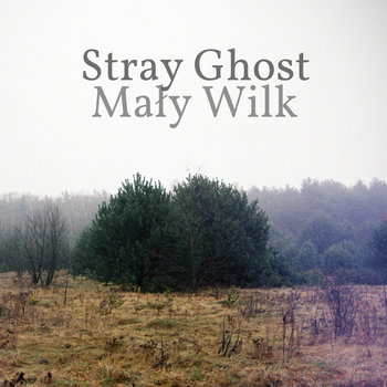Mały Wilk cover art