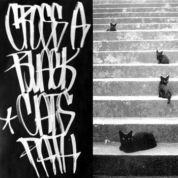 Cross A Black Cat&#39;s Path cover art