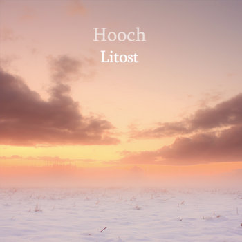 Litost cover art