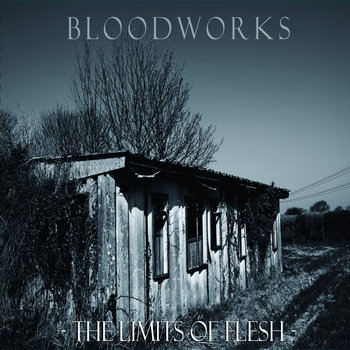 The Limits Of Flesh cover art