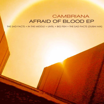 Afraid of Blood EP cover art