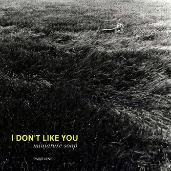 I Don&#39;t Like You (part 1) cover art