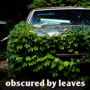 Obscured by Leaves cover art