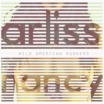 Wild American Runners cover art