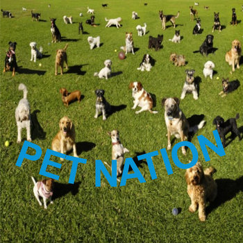 Pet Nation cover art