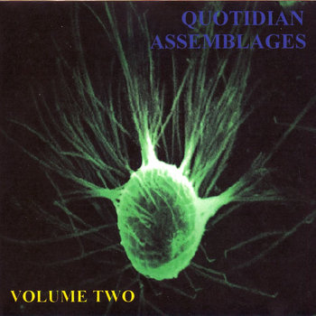 Quotidian Assemblages Vol. 2 cover art