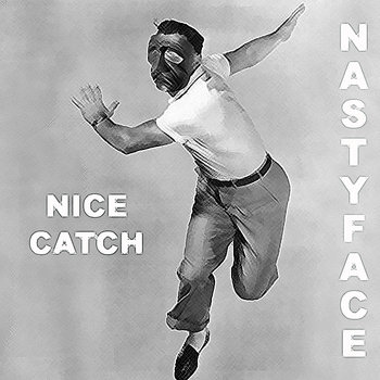 Nice Catch cover art