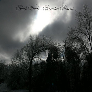 Black Winds - December Dreams cover art