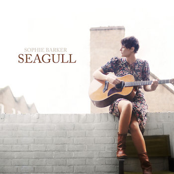 Seagull cover art