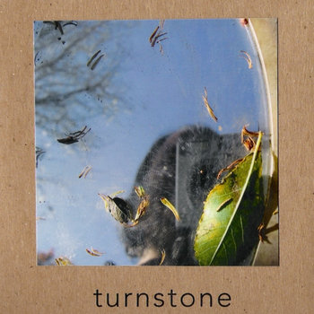 Turnstone cover art