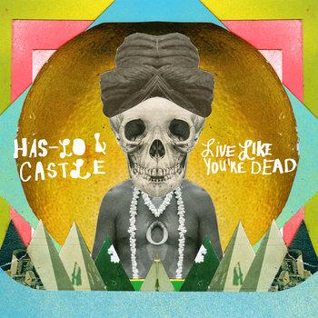 D.L.S. cover art