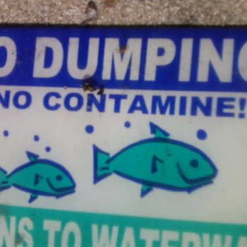 No Dumping cover art