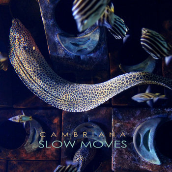 Slow Moves Single cover art