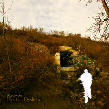 Electric Dyslexic cover art