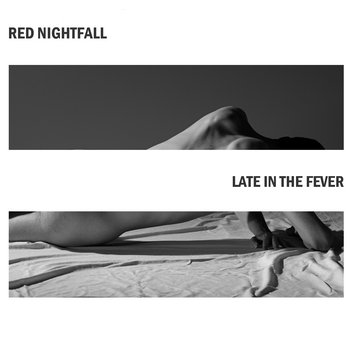 Late in the Fever cover art